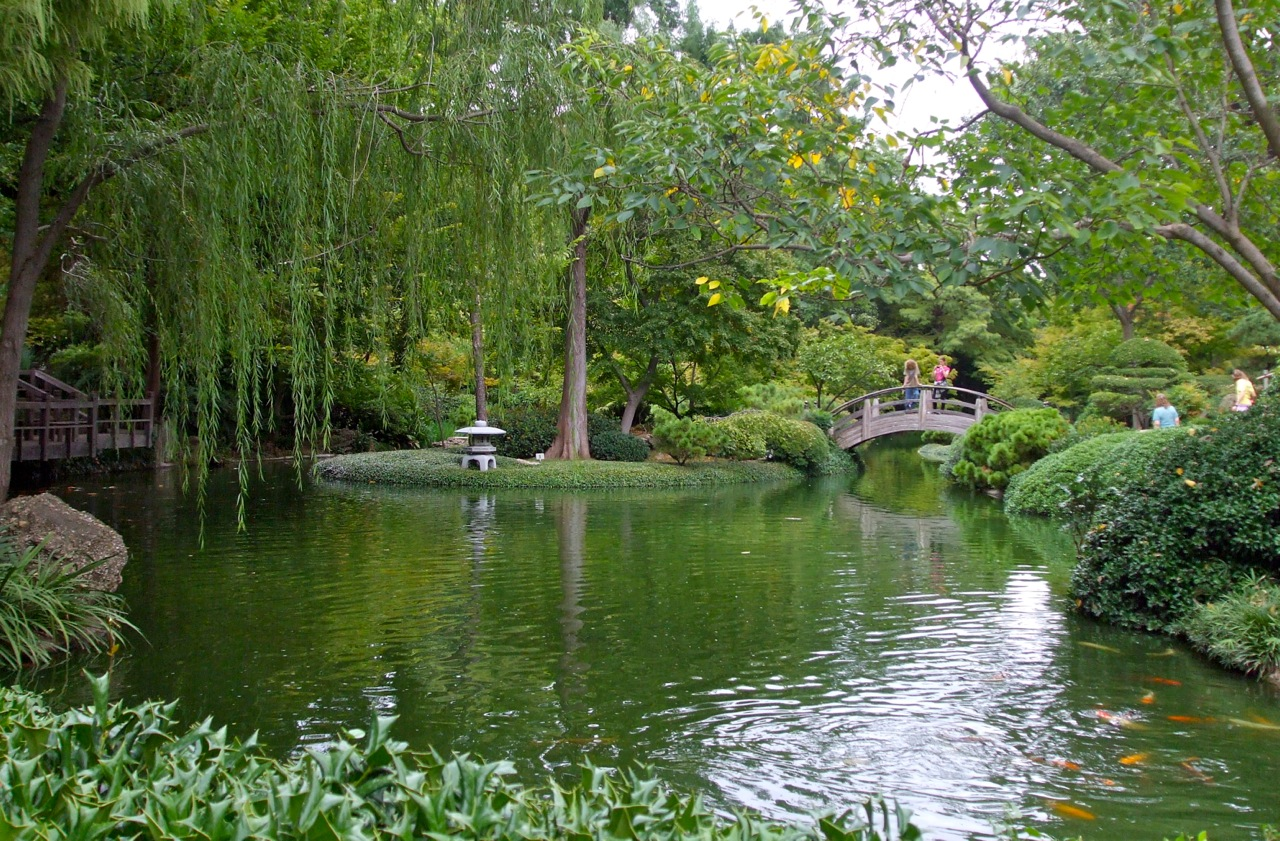 Fort Worth Botanic Gardens An Invincible Summer